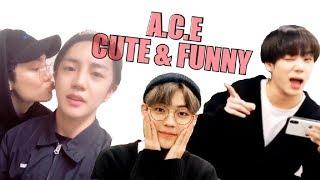 A.C.E (에이스) CUTE & FUNNY MOMENTS #23