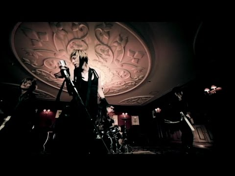 Acid Black Cherry - Chou