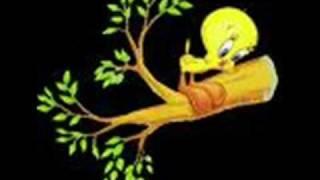 Vídeo 54 de Crianças Diante do Trono