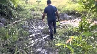 Captação de agua de nascente na Fazenda Guimarães