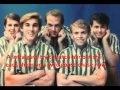 The Beach Boys- Fun Fun Fun (with lyrics)