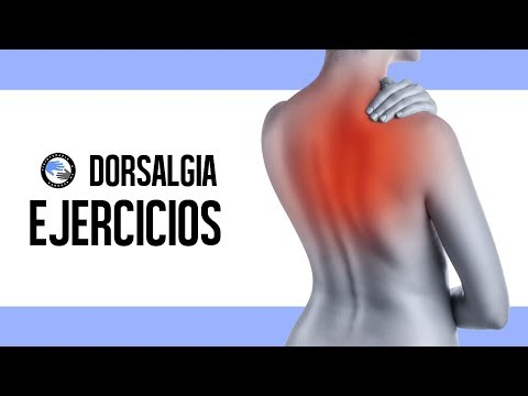 Dorsalgia o dolor de espalda, como aliviar el dolor / Fisioterapia a tu alcance