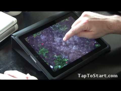 Pocket Pond iPad Review