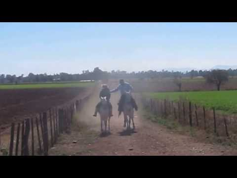 Horseback Riding in Northwest Argentina