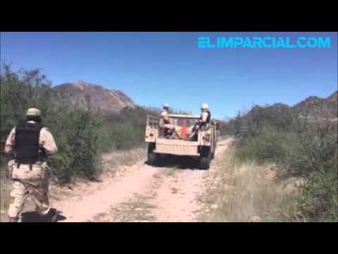 Hallan 3 fosas con osamentas en Guaymas