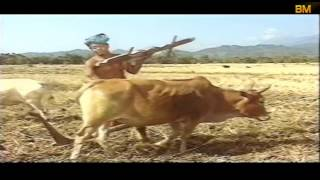 FULL BODO FILM | BASIRAM JWHWLAO (बासिराम जोहोलाव)