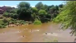 Vídeo mostra momento que homem morre afogado na vereda em Cafarnaum Bahia
