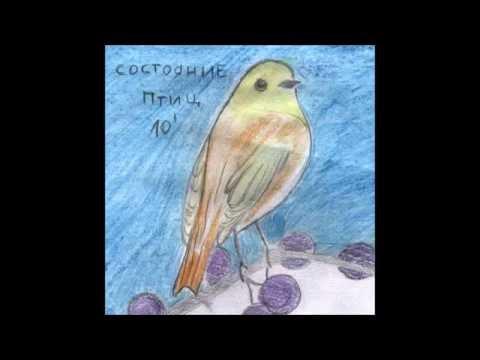 Состояние Птиц - Десять