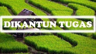 Download Lagu [DIKANTUN TUGAS] SUNDANESE INSTRUMENTALIA | DEGUNG SUNDA | INDONESIAN TRADITIONAL MUSIC Gratis STAFABAND