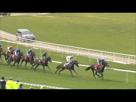 2013 Betfred Dante Stakes - Libertarian