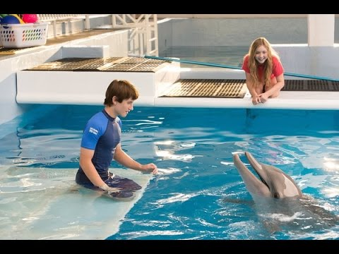 Dolphin Tale 2 (Starring Harry Connick Jr.) Movie Review