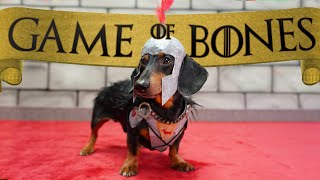 "Ep 5. GAME of BONES - ""Dachshunds are Coming"""