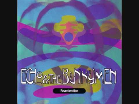 Echo & The Bunnymen - Gonegonegone