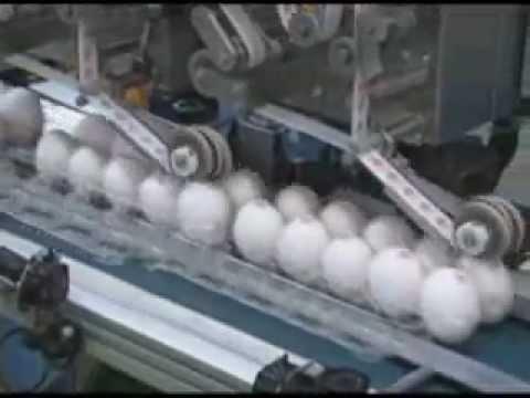 JVT 2011.08 -- Speedy and Safe: Japan's Egg Technology