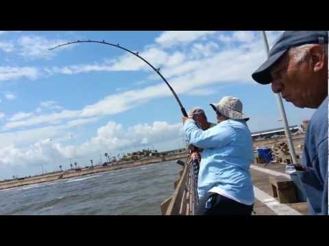 Download pier fishing tips for beginners part 1 the for Galveston pier fishing