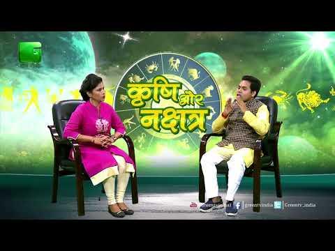 Sandalwood ki Kheti - Ka Grah Aur  Nakshtra se sambandh In Krishi Aur Nakshtra On Green TV Green TV