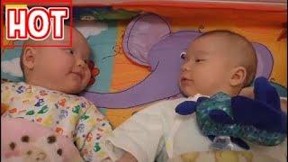Những em bé hài hước | Xem lại 1000 lần vẫn cuời | Laugh Plus ( Phần 5)