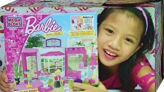 Mega Bloks Barbie Pet Shop - Includes Pretty Pets Barbie