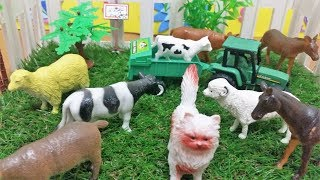Learn Pet Animals Names And Her voices For Kids In English in an easy and fun way