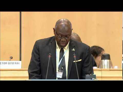 Dr. Fenton Ferguson, Minister of Health of Jamaica at the 66 World Health Assembly