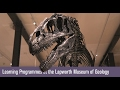 Learning Programmes at the Lapworth Museum of Geology