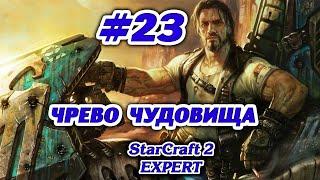Starcraft II Компания Терранов на Эксперте #23 Чрево Чудовища