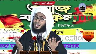 বিশ্ব নবীর উম্মতদের মর্যাদা Bangla waz Hafej Mawlana Habibullah Mesbah New Mahfil Media