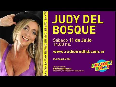 Maga Judy Del Bosque en Radio ired Argentina 11/07/2015