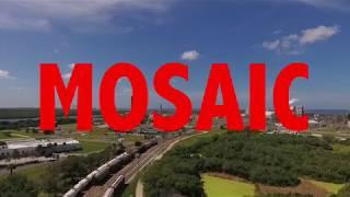 The Mosaic Company - Celebrating 10 Years