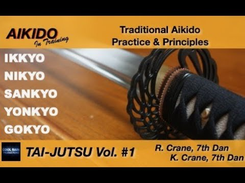 'Aikido In Training' - Excerpt of Vol.  #1 Image 1
