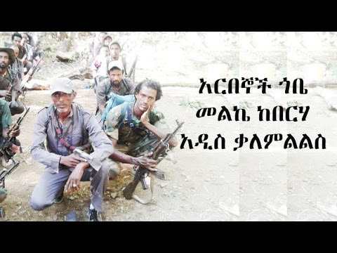 Voice Of Amhara Interview With Arebegna Gobe Melke