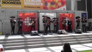 Mexico what are you doing to me by Mariachi Los Dorados at CBC !