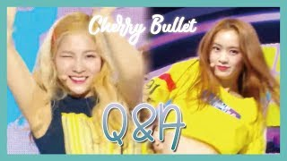 Hot Cherry Bullet Q A 체리블렛 Q A Music Core 20190216