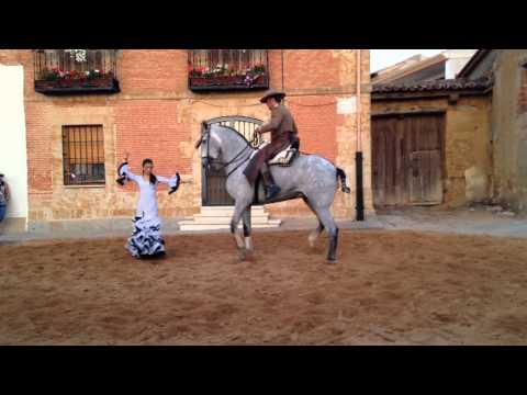 Sevillana a caballo. Virginia Sánchez, Sanzoles- septiembre2015