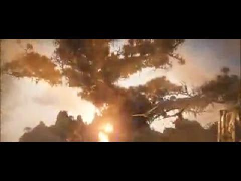 Ga'Hoole, la leyenda de los guardianes - Trailer 2 en español