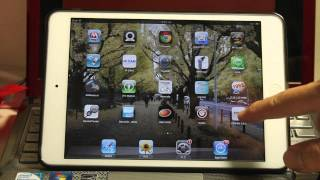 "wifi wireless microscope display on iPad by APP ""FEBON CAM"""