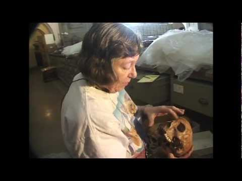 Lucille St. Hoyme Examines Human Skulls from former Cemetery at Walter Pierce Park