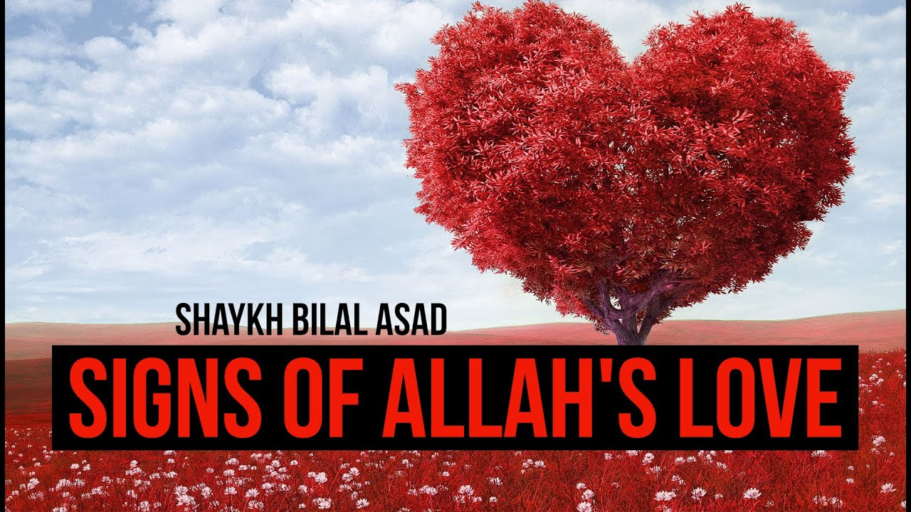 Signs Of Allah's Love ...