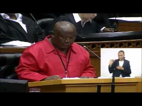 Julius Malema shakes up Parliament