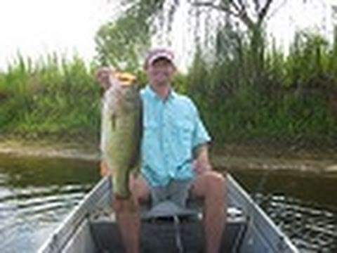Big Largemouth bass, bass fishing in Alabama