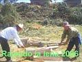 Tierra Pallasquina