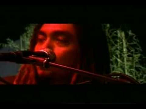 Steven & The Coconut Treez - Badai (live)