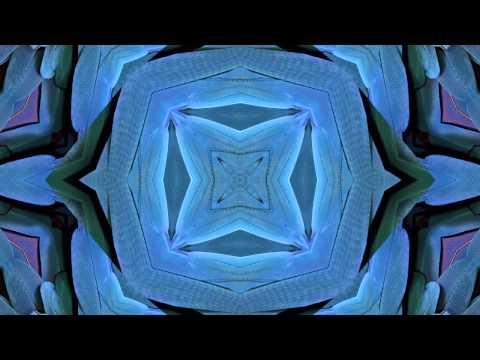 Denzal Park feat. Penelope Austin - Animal Heart (Chardy Remix...