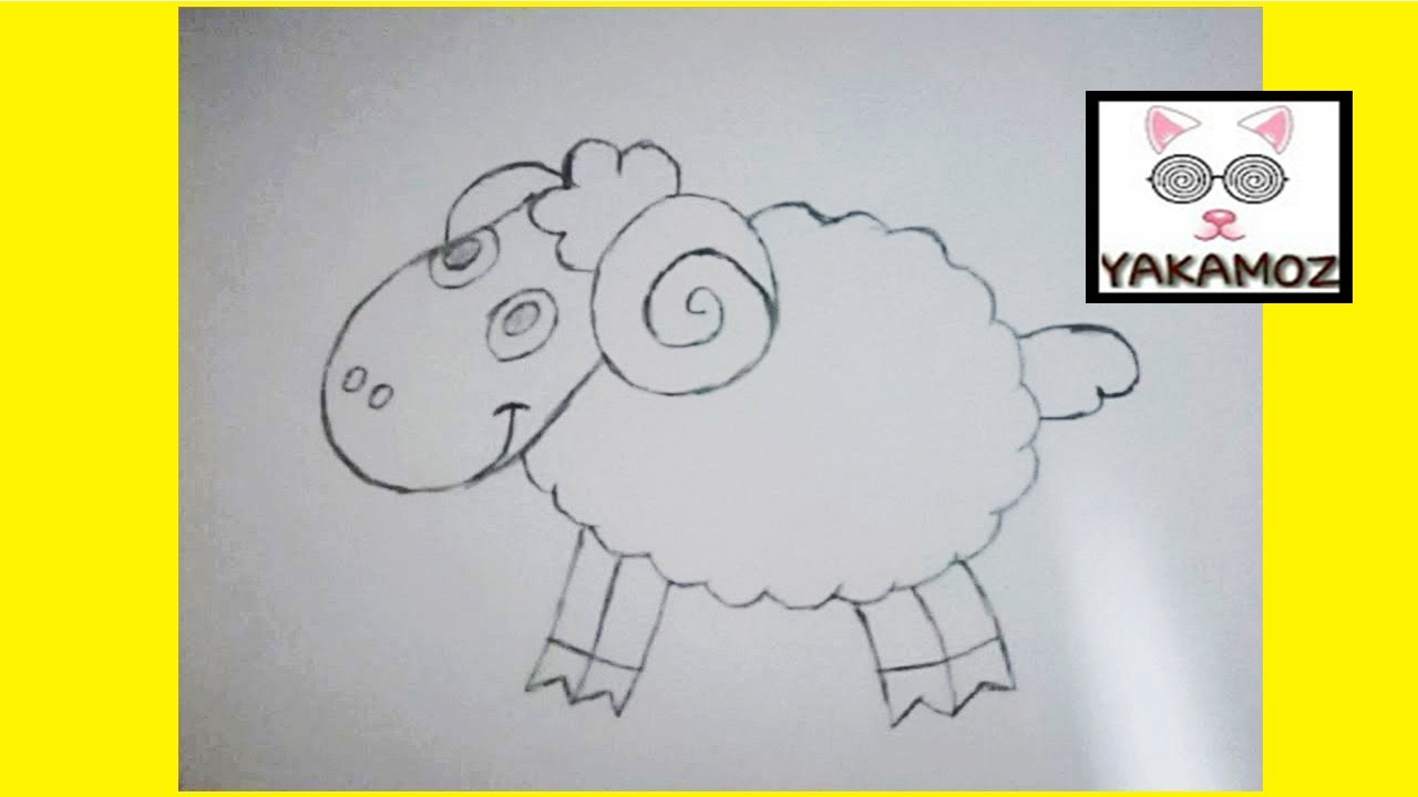 How to draw a cartoon sheep
