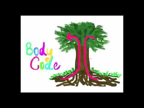 The Body Code - Dr Bradley Nelson