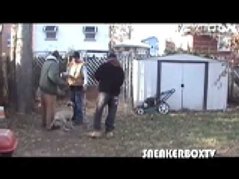 REDBONE KENNELS FEAT. HOLLYWOOD NICKY - EQ THE DOG BREEDER ****SNEAKERBOXTV****