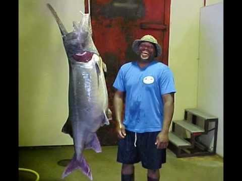 Worlds Largest Fish (World Records Freshwater)