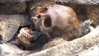 Exumação de  Maia-Baratas encontradas dentro do caixão