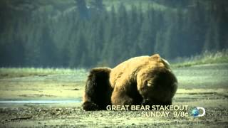 Great Bear Stakeout | Mothers Day - Sunday 9/8c