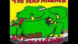 Watch Dead Milkmen Plum Dumb video